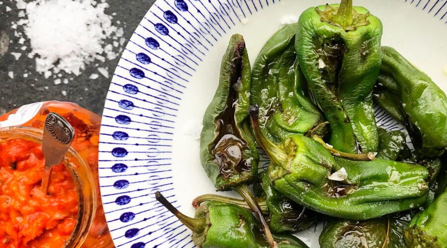 Grillede Padron-peberfrugter med Taggiascaolivenolie og havsalt